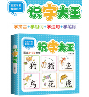 972 Word Pinyin Chinese Book Literacy Pictures Early Education book Basic Characters Kids